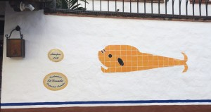 Puerto-Vallarta-fish