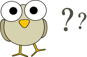 googley-eye-birdie-has-questions-300px